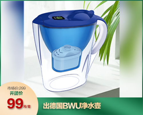 出德国BWU净水壶/滤芯(03.25)